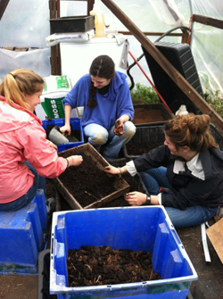 PHOTO: Students work with plants