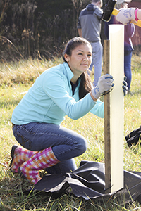 PHOTO: JMU Students plant trees